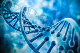 illustraion of DNA strand
