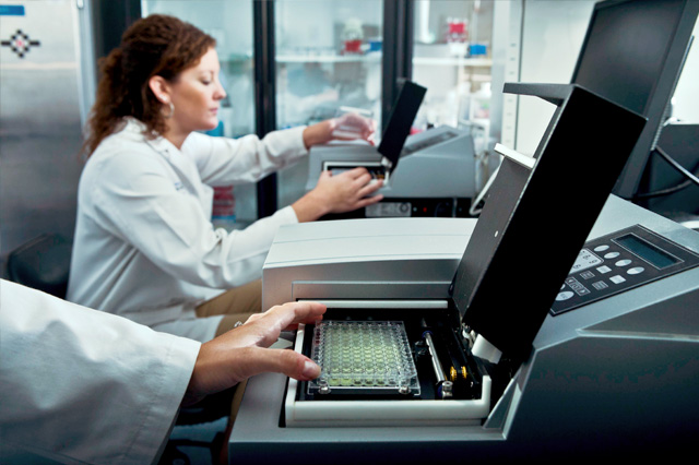 Lab technician using Bio-Tek ELx808 Absorbance Microplate Reader for endotoxin analysis