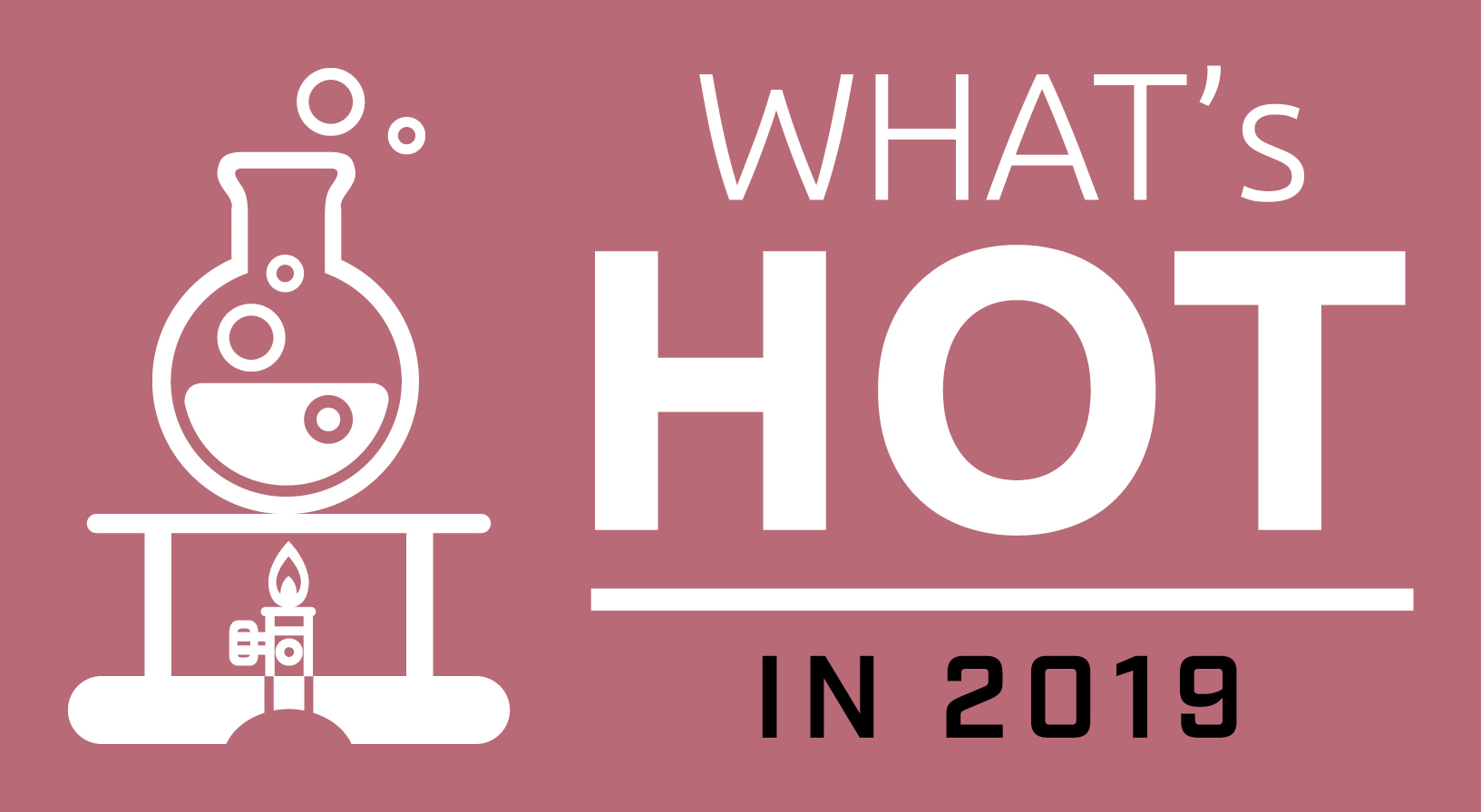 What's hot in 2019 logo