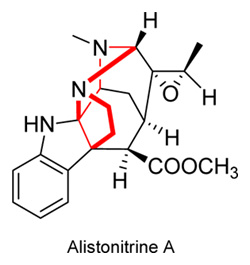 Alistonitrine A, extracted from Alstonia scolaris, 15kg of leaves gives 5mg of Alistonitrine A
