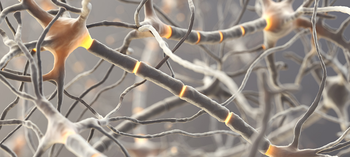 Abandon the Amyloid Hypothesis? Not So Fast