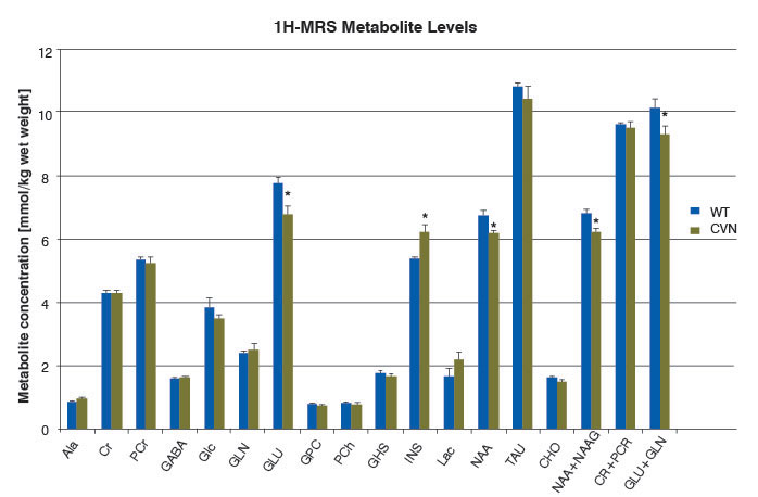 Chart of 1H-MRS metabolite levels in CVN and wild-type mice
