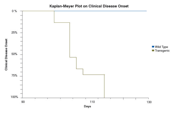 Kaplan-Meyer plot on clinical disease onset in SOD1 and wild-type mice