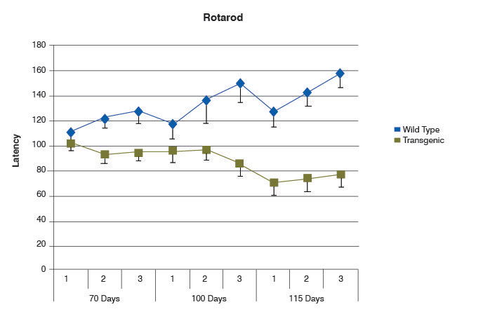 chart of rotarod test results from SOD1 and wild-type mice