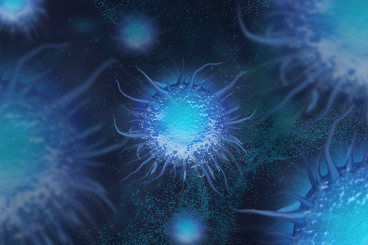 Dendritic cells used for Charles River's Cell Based Assays.