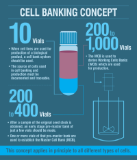 cell baniking infographic
