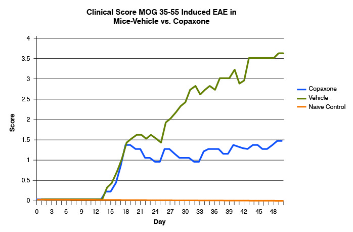 Clinical Score of MOG-induced EAE in mice (Treatment with Vehicle or Copaxone)