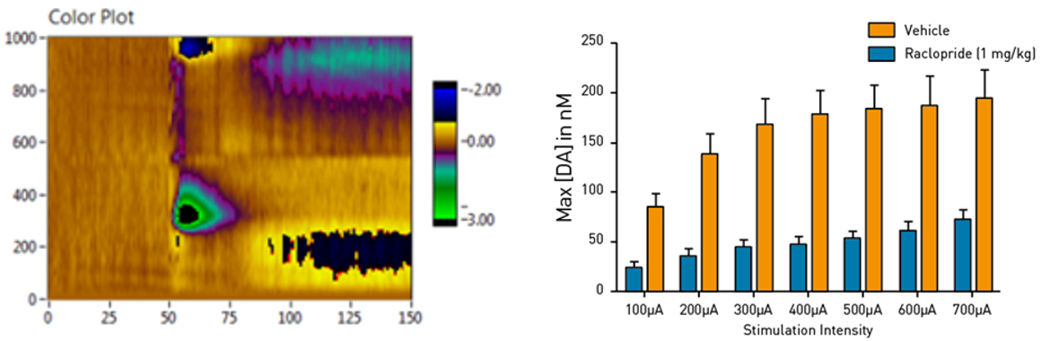 An electrochemistry experiment showing a color plot of the voltammetry changes from electrically-evoked dopamine release in a mouse brain. A chart on the right showing in vivo recording of phasic dopamine release in rodents upon increasing electrical stimulation.