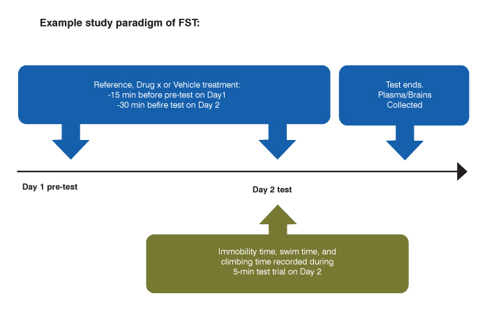 example study paradigm of the forced swim test