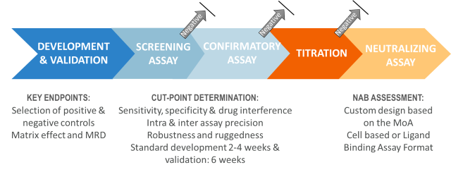Schema of antibody testing, where the whole process can be run together or as stand-alone steps.