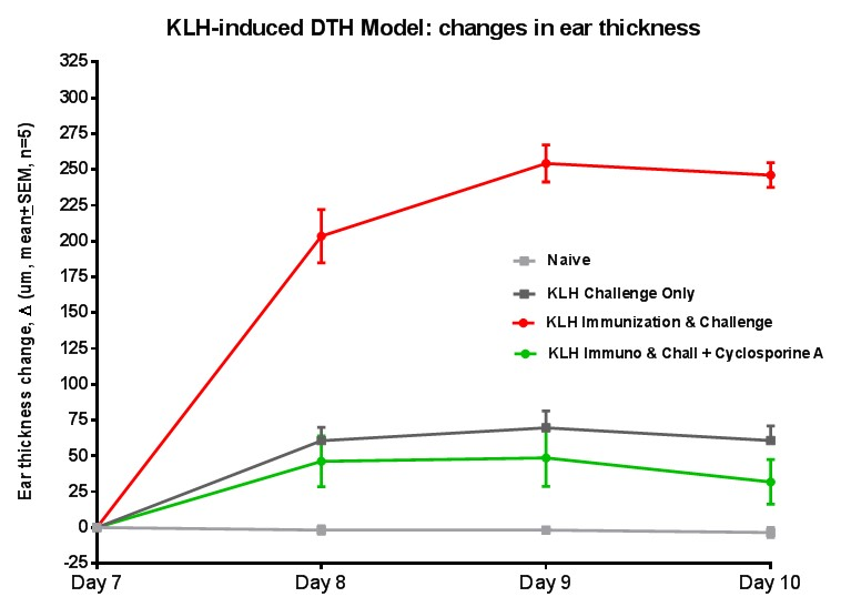 graph of changes in ear thickness in a KLH-induced DTH model for different treatments