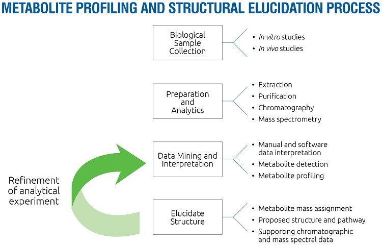 The metabolite profiling and structural elucidation process is an iterative one that aids in the prediction of human in vivo metabolites throughout the drug discovery and development process. Data from nonclinical in vitro and in vivo models informs lead selection, optimization decisions and helps design safety and clinical studies.