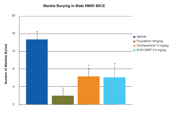 marble burying in male NMRI mice