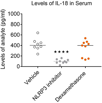 A NLRP3 inhibitor and Dexamethasone inhibit the inflammasome-induced release of IL-1β in peritoneal wash and serum. Only NLRP3 inhibition results in a significant reduction in serum IL-18.