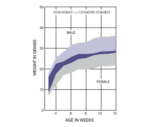 CD-1 Nude Mouse UK Growth Chart