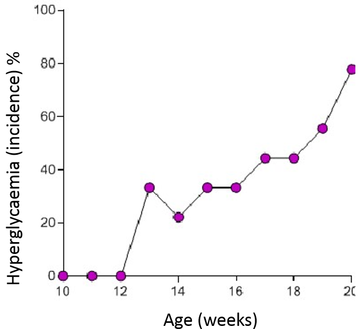 Graph from a Diabetes Mouse Model study indicating hyperglycaemia in a NOD Mouse Model.