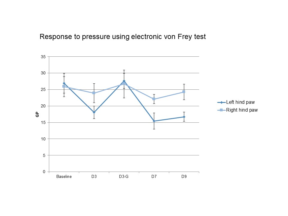 chart of response to pressure using electronic von Frey test