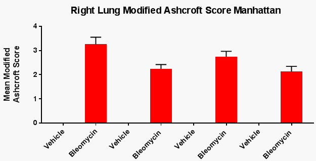 bar graph of right lung modified ashcroft score for bleomycin-induced rat model