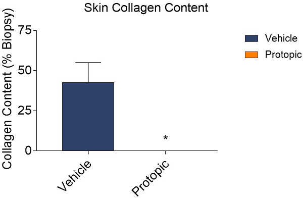 Graphs showing that Protopic improves skin collagen content compared to vehicle