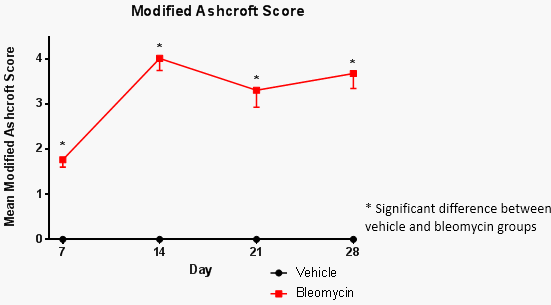 chart of modified ashcroft score in bleomycin-induced mouse model
