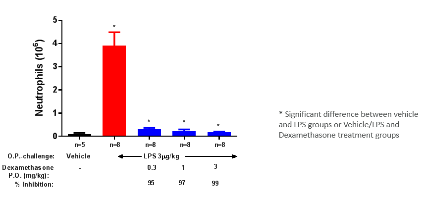 Chart assessing neutrophilia in bronchoalveolar lavage fluid