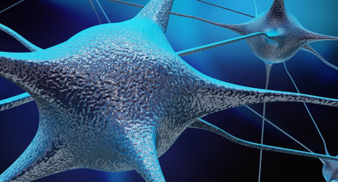 Microglia and Neuroinflammation