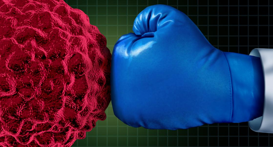 Protein Degraders, the Newest Players in Targeted Cancer Therapy