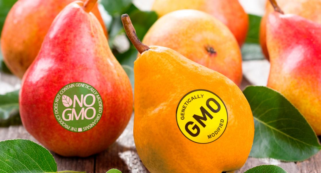 GMO Regulations Stymie Food Testers (Abstract Science July 20-26)