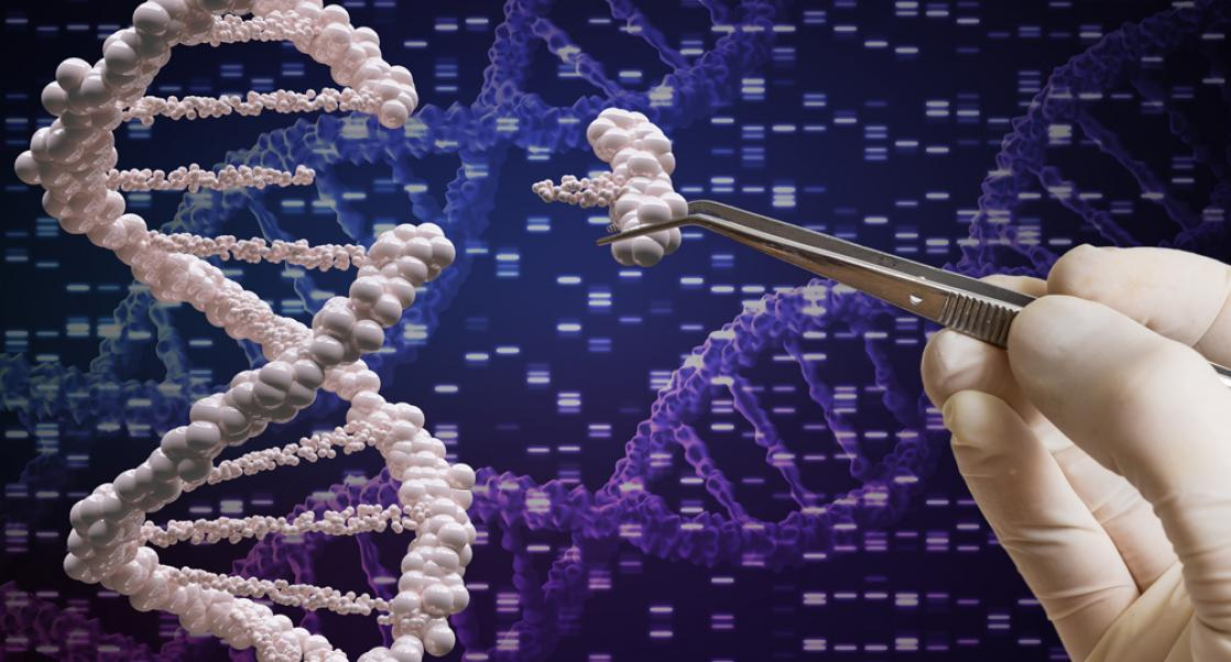 The Synergy between CRISPR and RNAi