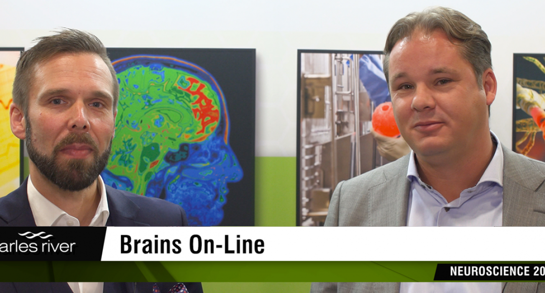 Capturing Brain Molecules in Cellular Space (Video)