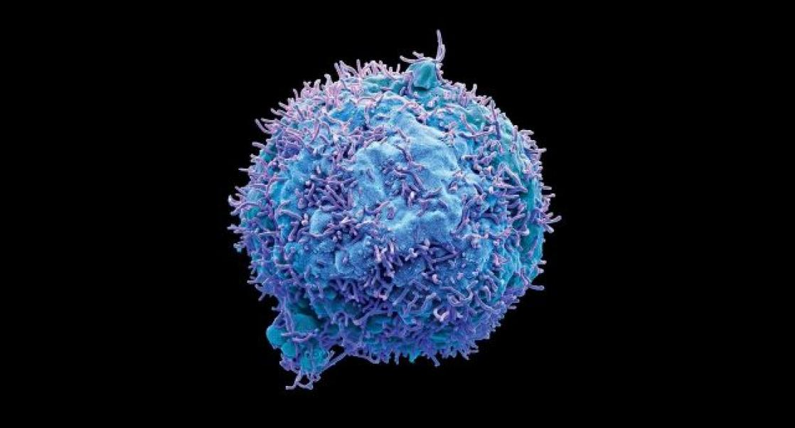 Booth graphic from AACR 2020 of a cancer cell.